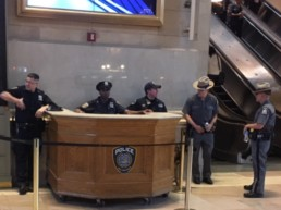 The Protectors of Grand Central Station