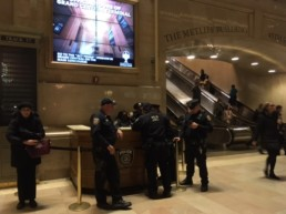 The Protectors of Grand Central Station: Who is in charge here?