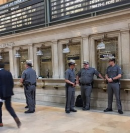 Defenders of Grand Central Station